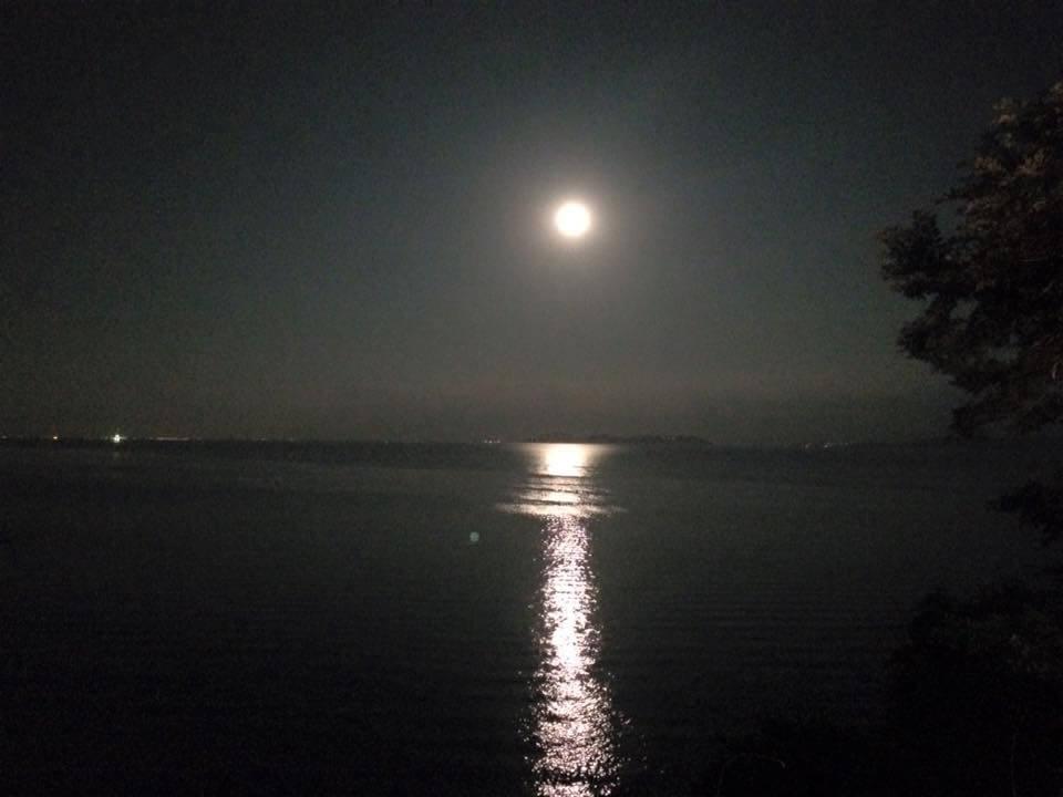 昨夜は風も波もなくとても綺麗な水面でした 静かな海をただ眺めるだけの贅沢な時間を過ごすのもいいですよ